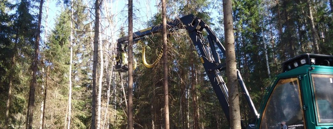 Головка для заготовки энергетической древесины AFM 220