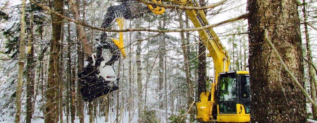 Решения для лесозаготовителей